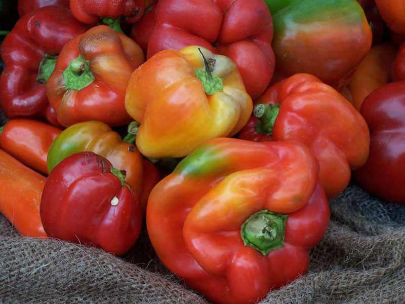 Bell Peppers by Tim Sakton (flickr)