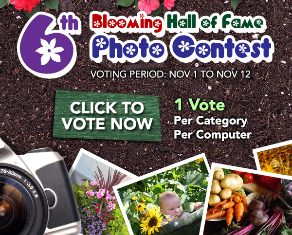 6th Annual Blooming Hall of Fame Photo Contest - Vote Now
