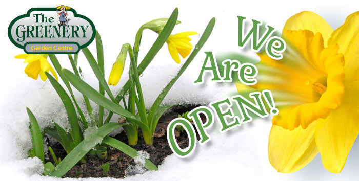 Greenery Now Open