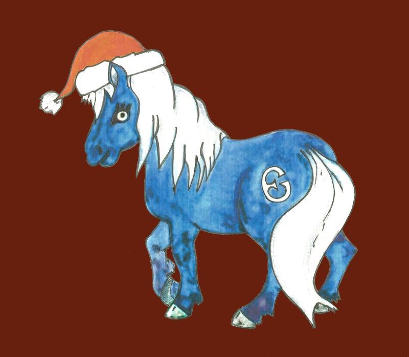 pony epona