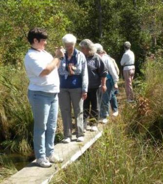 Mennonite Women Usa A Postcard A Prayer