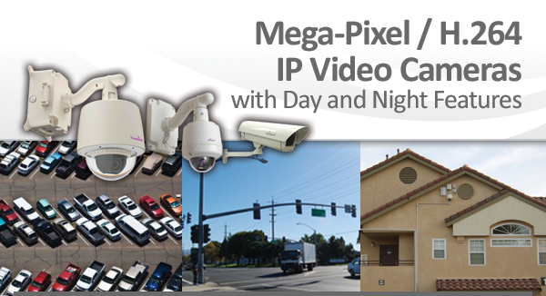 Megapixel / H.264 IP Video Cameras with Day and Night Features