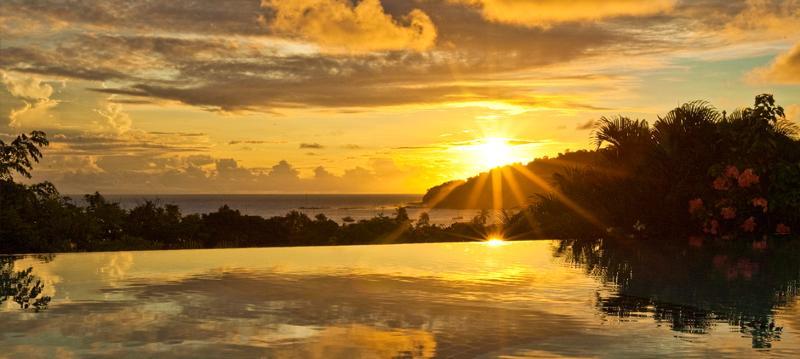 Pelican_Eyes_Sunset