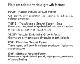 Magellan Growth Factors