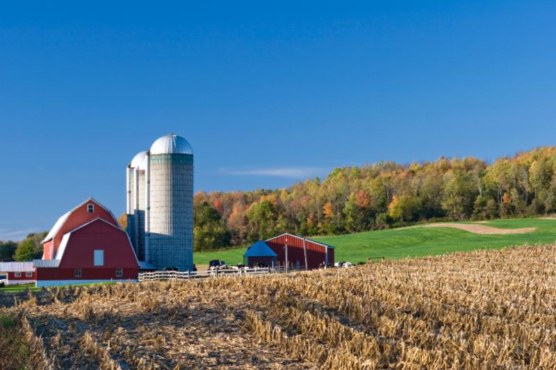Barn Farm Scenery