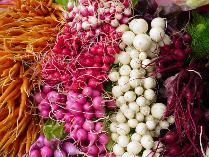 vegetable root radish carrot beet turnip winter