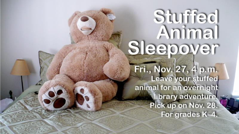 stuffed animal sleepover