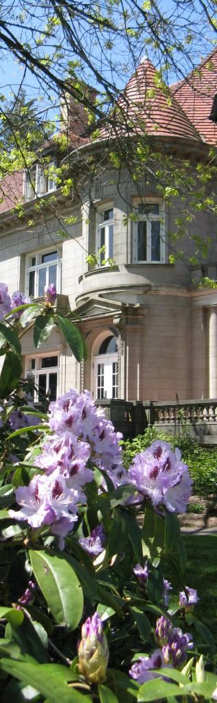Spring Mansion