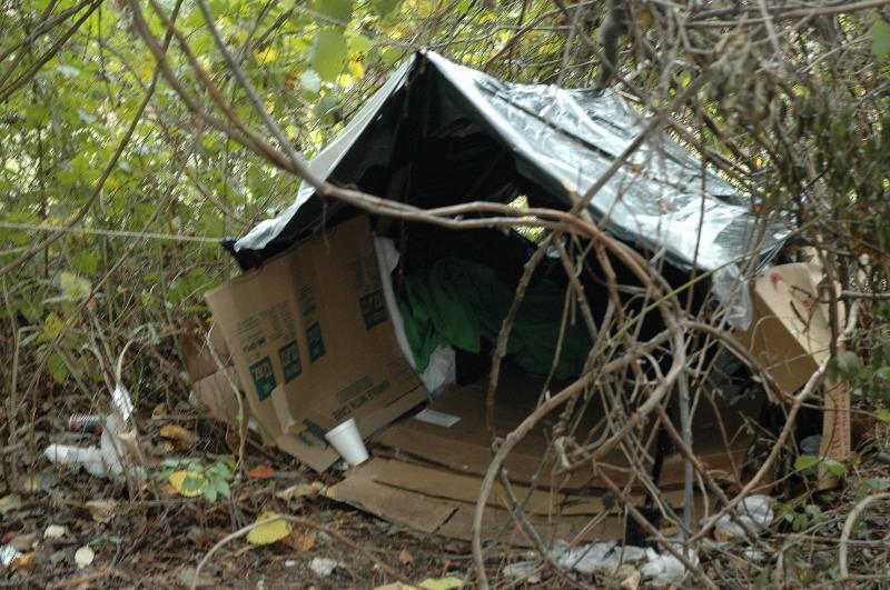 tent in woods