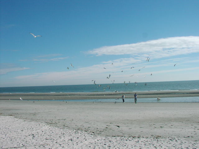 Islanders Beach Club