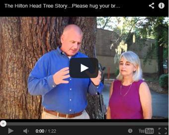 Tree Story Hilton Head