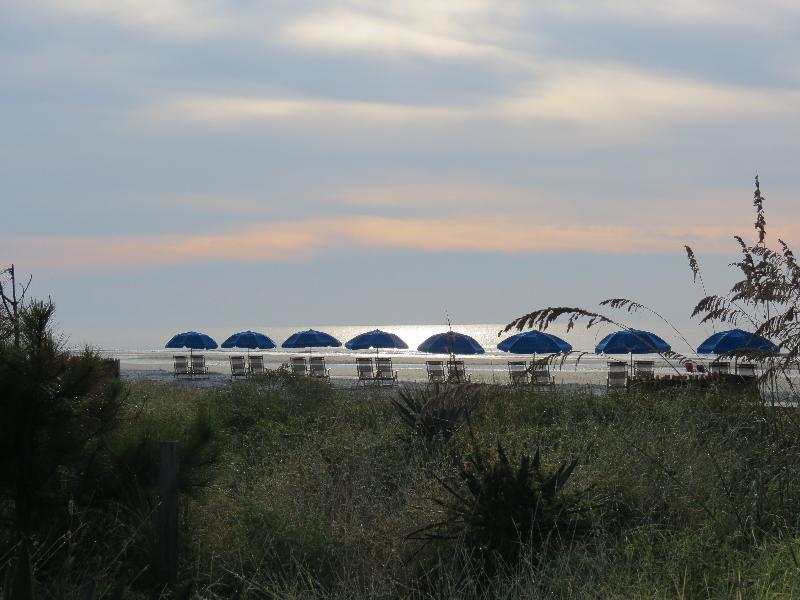 Surf Hilton Head Properties