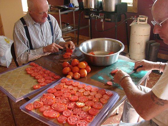 Tomatoe Cutting