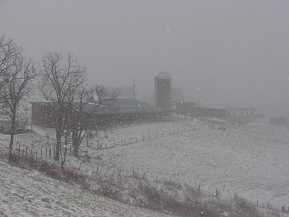 The farm in a snowstorm