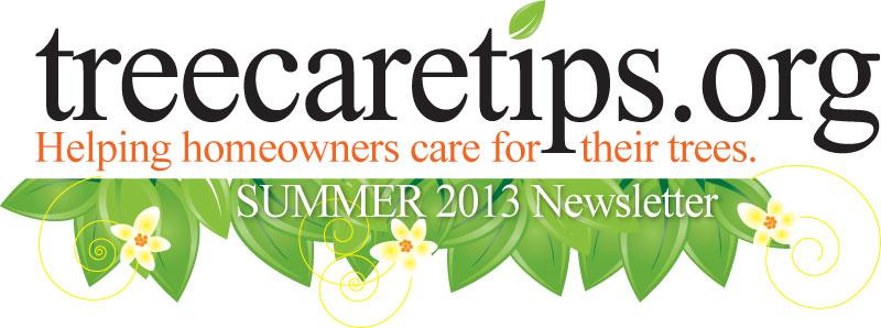 Tips Summer 2013