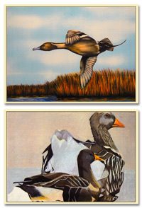 2 junior duck stamp winners