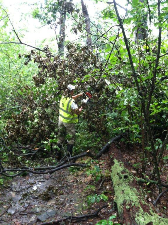 Breakheart Trail Clearing