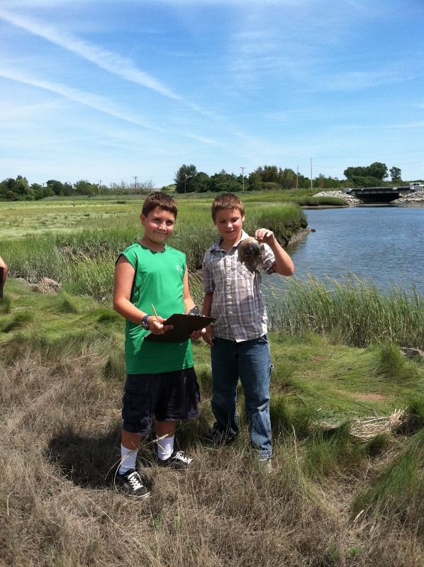 Rumney Marsh 2012