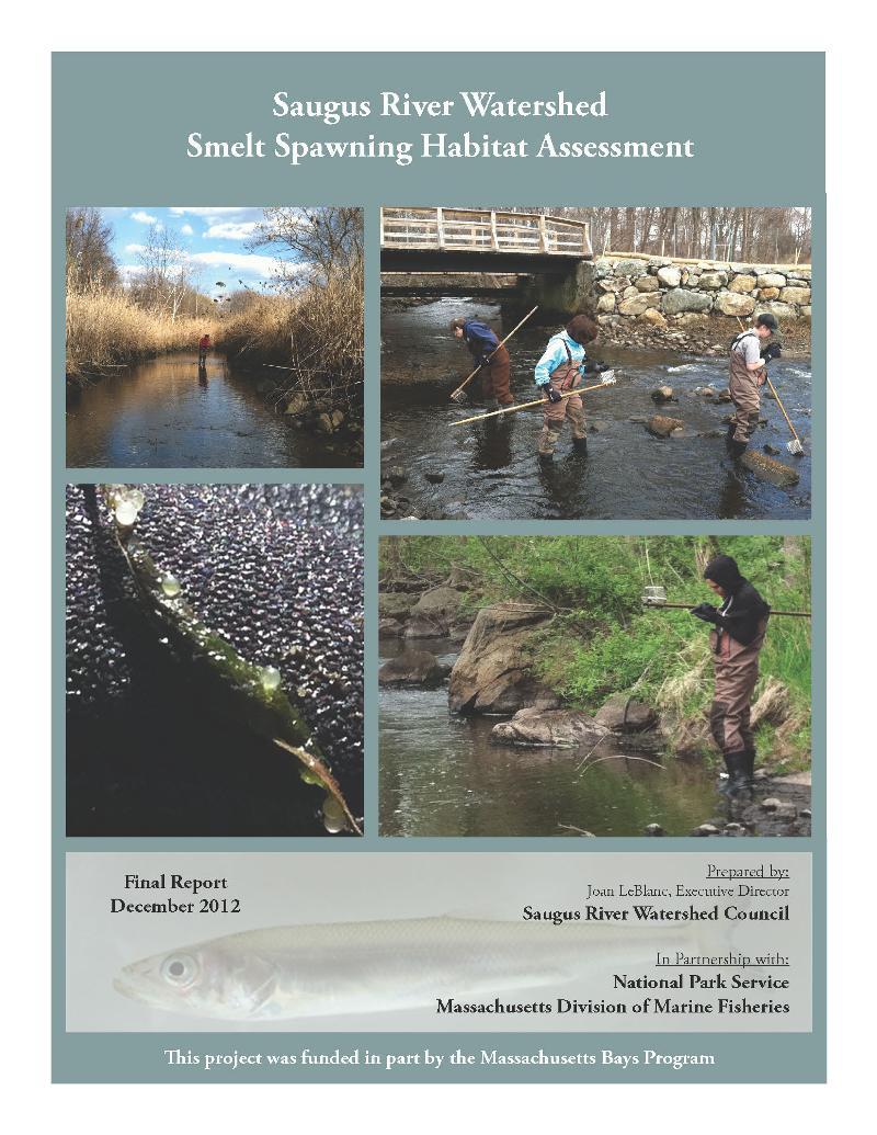 Smelt Spawning Habitat Assessment Final Report