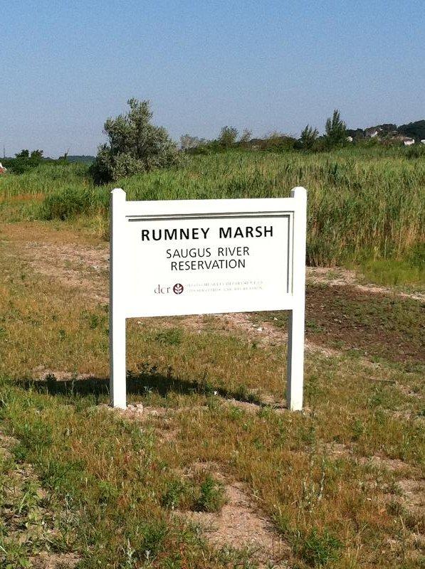 Rumney Marsh