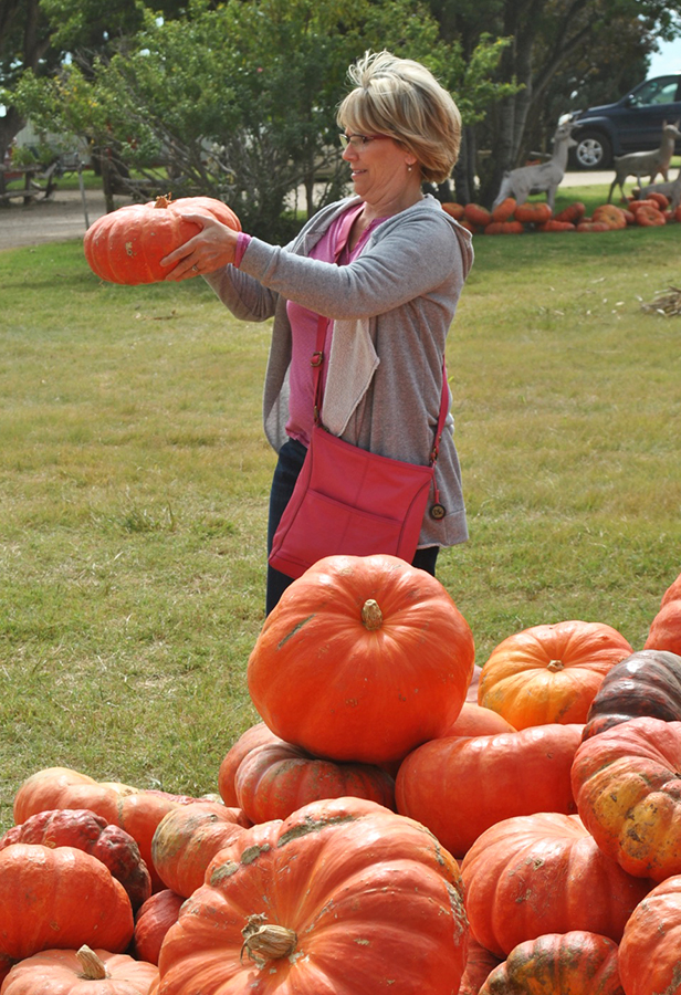 Pumpkin picker, Punkin Day