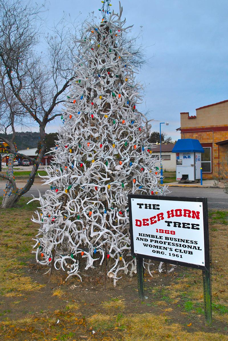 Deer Horn Tree_ Junction_ TX