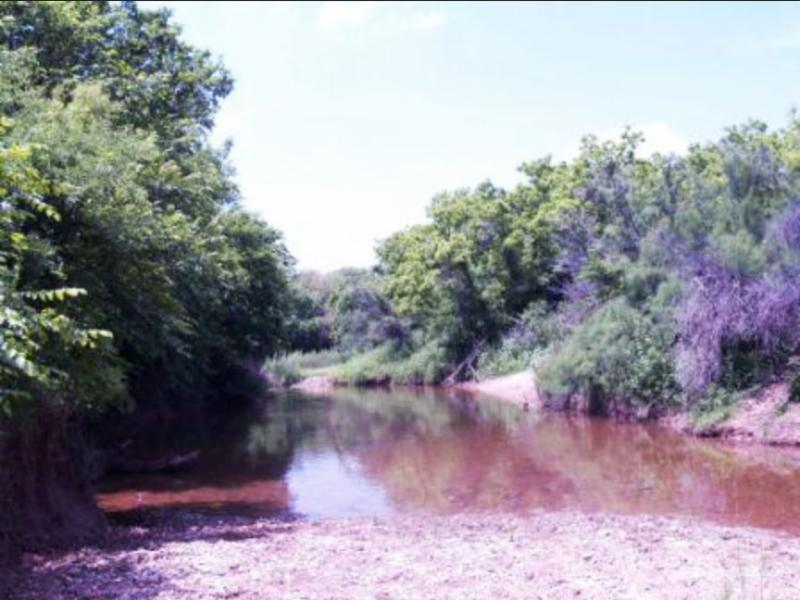 Pease River site, Foard County, Texas