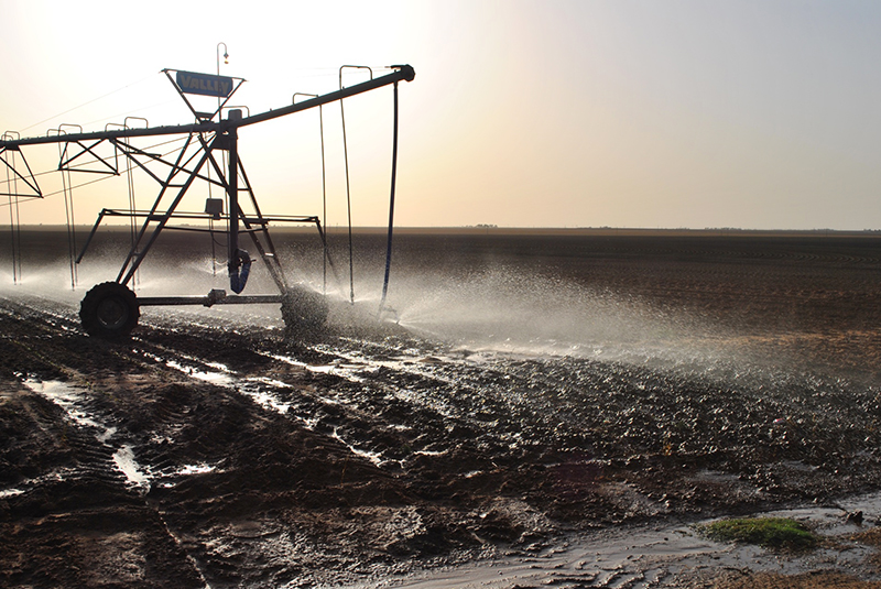 Crop irrigation, Dawson County