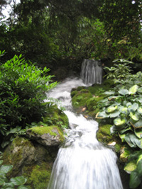 Favourite waterfall