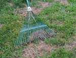 Rake lightly