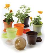 Eco Pots