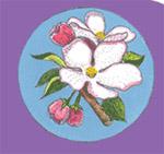 Flower & Quilt Show