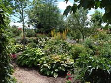 Peak garden