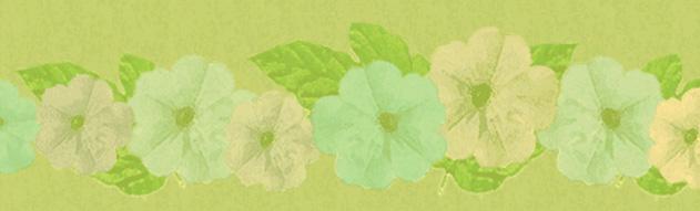 muted-flowers-banner.jpg