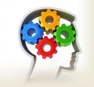 gears in the brain