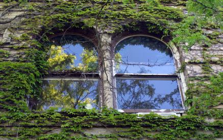 iy window