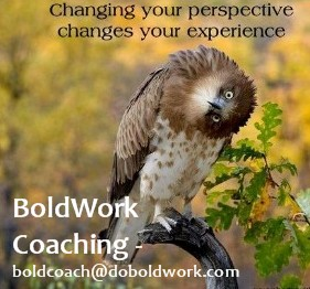 hawks BoldWork coaching