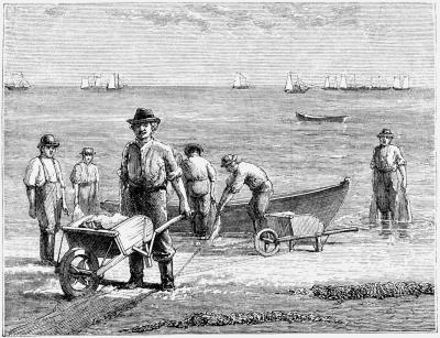 Fisheries Jobs Rhode Island