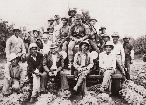 filipino farm workers