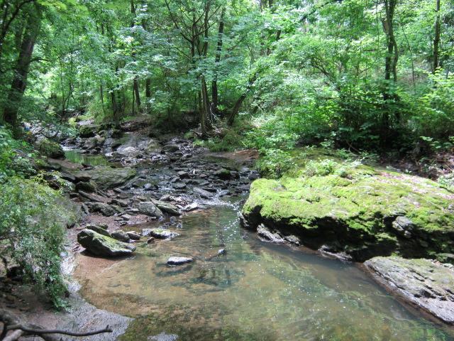 Tacony Creek Park