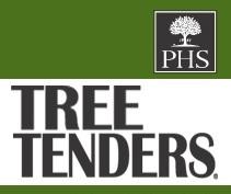 TTF PHS TREE TENDERS