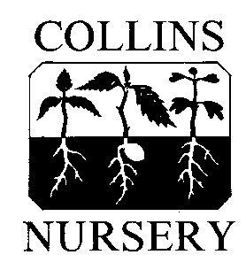 Collins Nursery