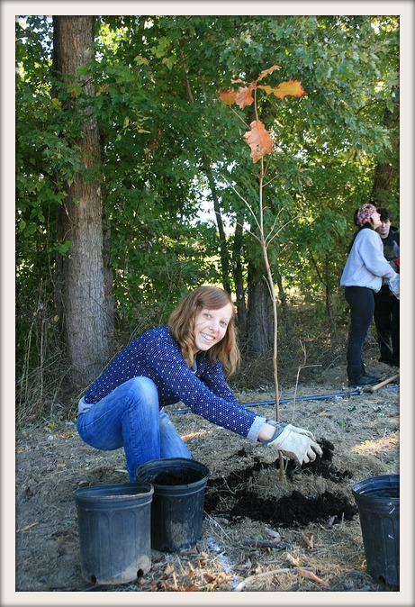 Volunteer at Abington Buffer Plant
