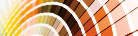 color-consultation1.jpg