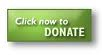Donate now green