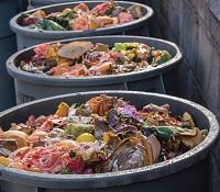 Manhattan_s Union Market composts food waste