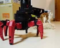 kittens v combat robot