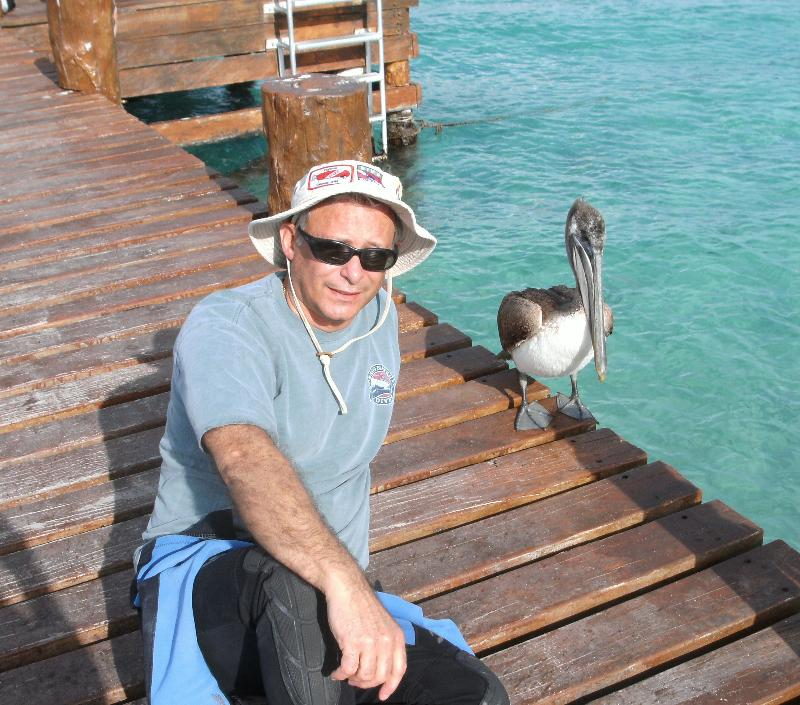 Paul & the Pelican