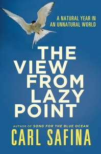 Book-View From Lazy Point