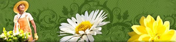 flowers-gardener.jpg